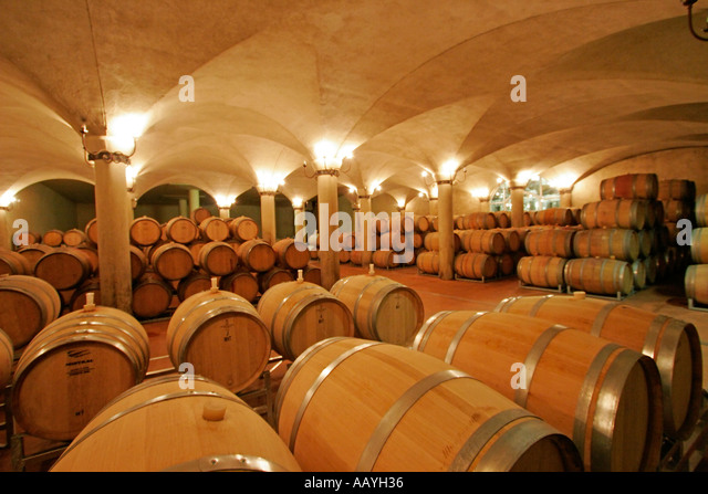 south africa wine region Suider Paarl Avondale wine cellar  - Stock Image