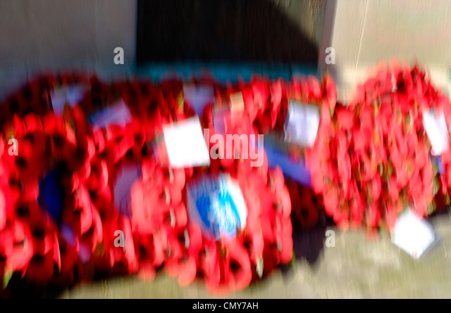 Memorial Poppies Impressionist - Stock Image