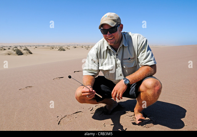 Travel guide demonstrating magnetic sand, magnetite,  National Park, part of the Namibian Skeleton Coast National - Stock-Bilder