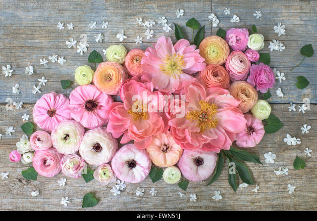 Overhead shot of ranunculus, peonies and anemones - Stock Image