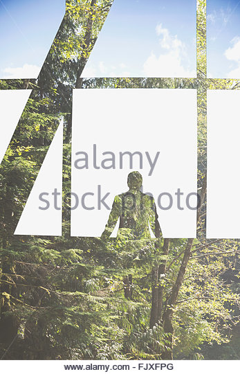 Digital composite businessman at window with forest trees - Stock Image