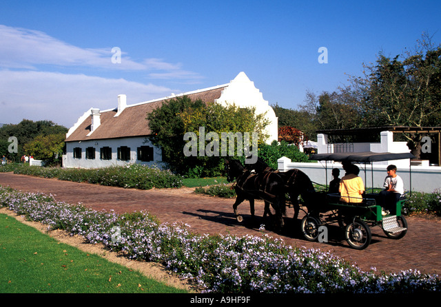 South Africa The Spier Estate in the Western Cape Cape Winelands - Stock Image