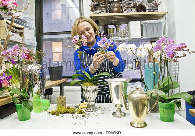 Floral designer arranging orchids in studio - Stock Image