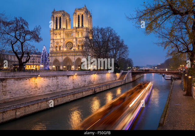 Notre Dame de Paris Cathedral and Christmas Tree Illumination in evening with the Seine River, Ile de la Cite, Paris, - Stock Image