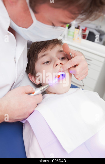 how to study dentistry in germany
