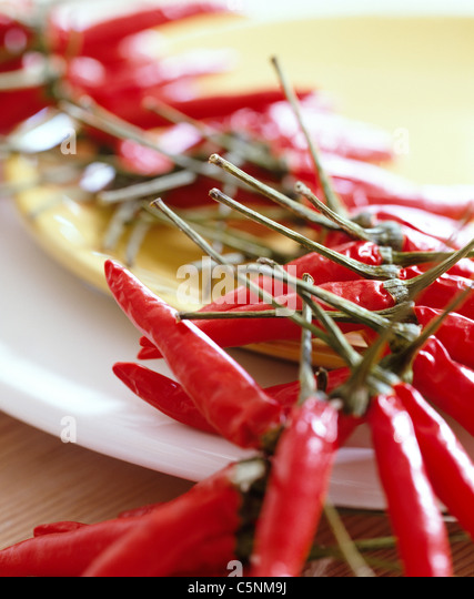 A Chain with red chili pods - Stock-Bilder