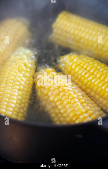 corn in boiling water. maize, pots and pans, vegetable, food . - Stock-Bilder