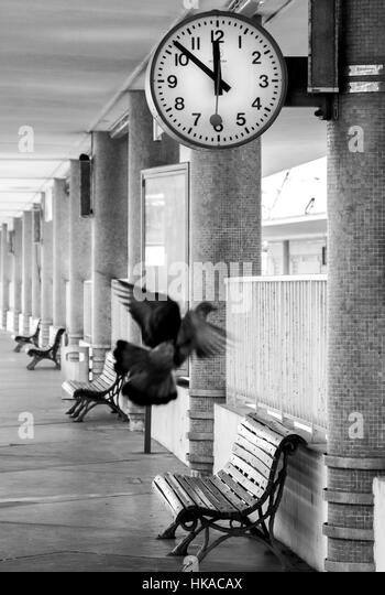Moment when time stops and every is perfect. Train Station clock and freeze flying pigeons. Nostalgic atmosphere - Stock Image