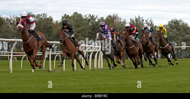 Horse Racing on the Bend, Hamilton (Musselburgh races), Lanarkshire, Scotland, UK, Western Europe. - Stock Image