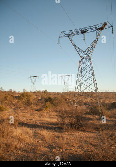 Power line in the countryside, Africa - Stock Image