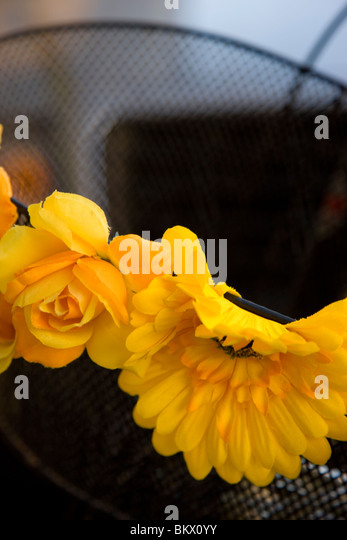 Yellow fake flowers attached to a bicycle basket - Stock Image