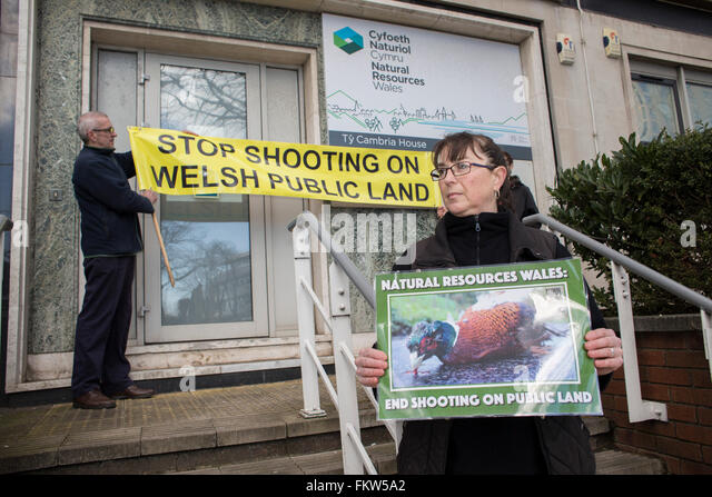 Campaigners from Animal Aid hold a protest outside the offices of Natural Resources Wales, in Cardiff, over the - Stock Image