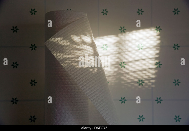 Sunlight streaming through venetian blinds create a striped pattern of shadows on a roll of fresh paper towels. - Stock Image