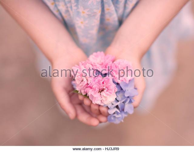 flower picking - Stock-Bilder