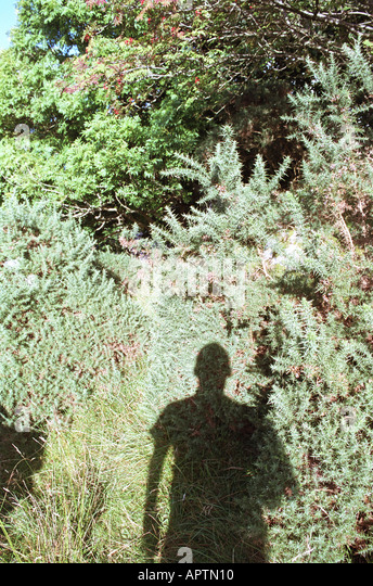 man's shadow in countryside - Stock Image