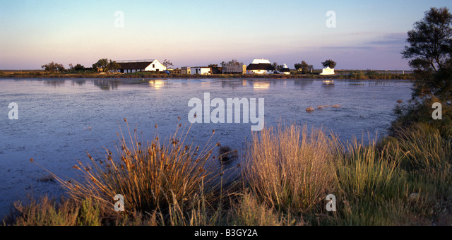 South France Provence Camargue wetlands - Stock Image