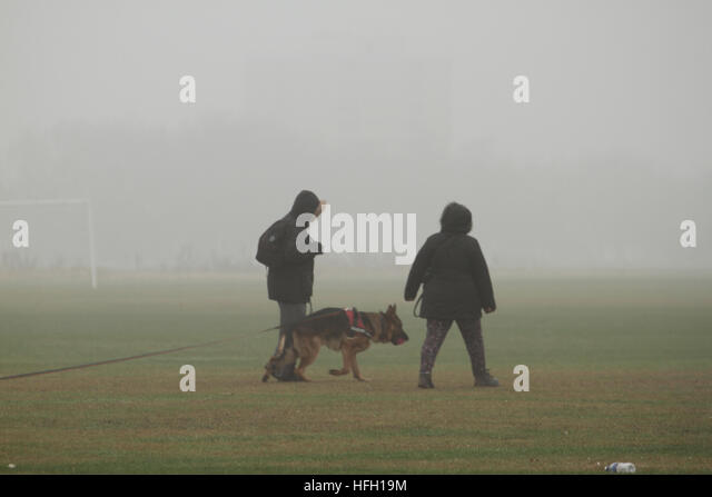 London, UK. 30th Dec, 2016. A couple with their gog  seen walking through the fog on December 30, 2016. Freezing - Stock Image