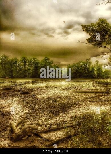 A post-apocalyptic mire. - Stock Image