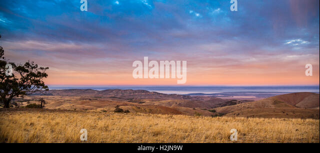 dawn at Spencer Gulf seen from Hancock's Lookout, near Wilmington South Australia - Stock Image