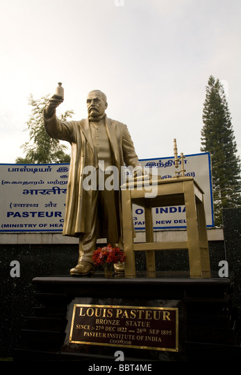 The statue of Louis Pasteur at the Pasteur Institute of India in Coonoor. Pasteur (1822-1895) discovered Pasteurization. - Stock Image