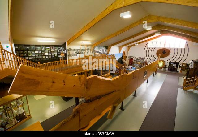 The world's largest Kauri slab (22.5m long) at the Matakohe Kauri Museum, North Island, New Zealand - Stock Image