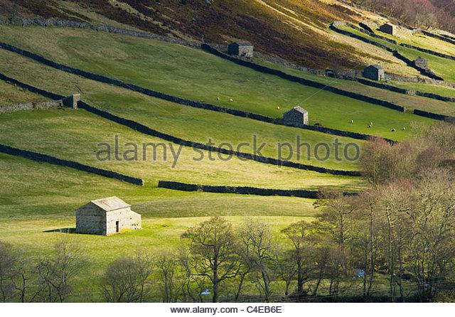 Traditional stone barns, Swaledale, Yorkshire Dales National Park, England - Stock-Bilder
