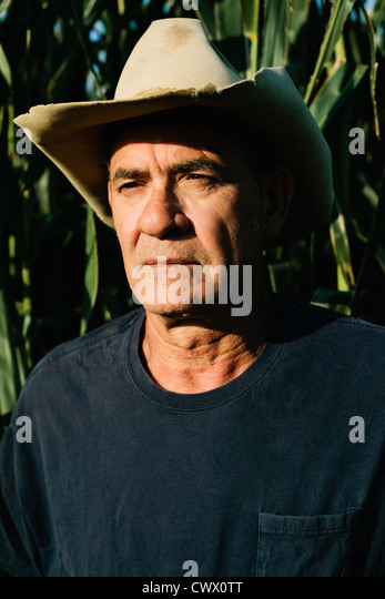 Farmer standing in corn field - Stock Image