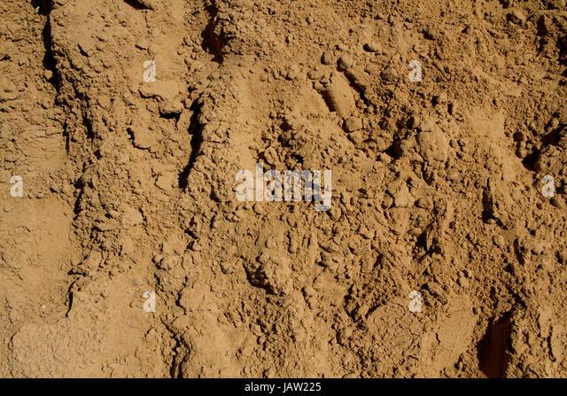 Sandy soil - Stock Image