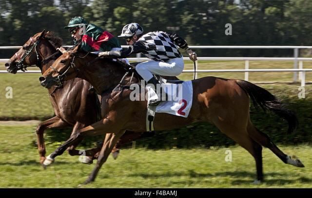 Horse racing, Dortmund, Germany. - Stock Image
