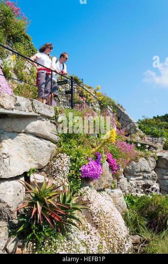 A sub tropical garden near Penzance in Cornwall, UK - Stock-Bilder