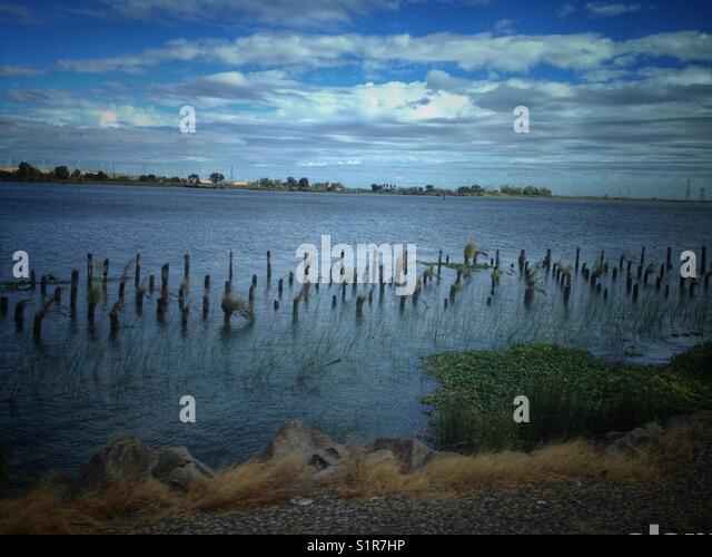 Sacramento-San Joaquin River Delta landscape - Stock Image