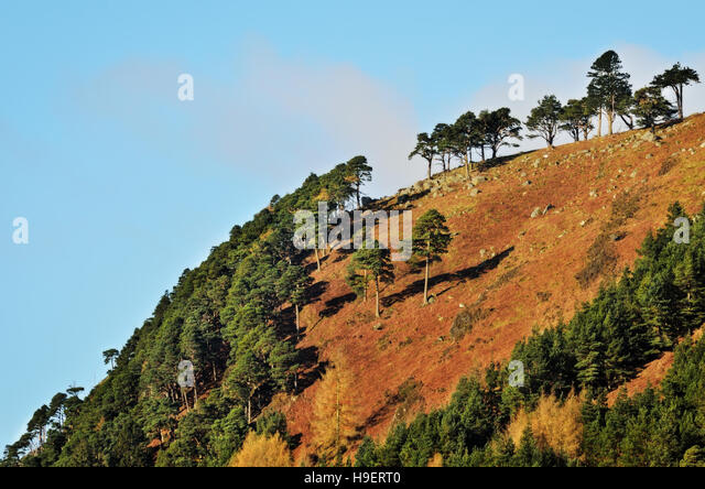 Glendalough - Wicklow Mountains - Stock Image