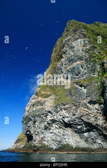 The cliff Rundebranden on the southwestern side of the island Runde, Norway. - Stock-Bilder
