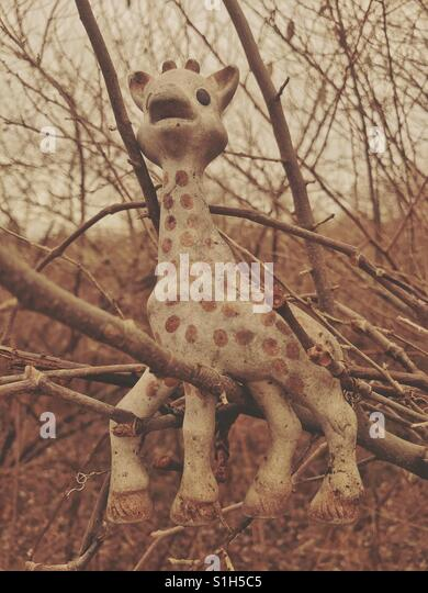 Giraffe Figure Abandoned in Woods - Stock Image