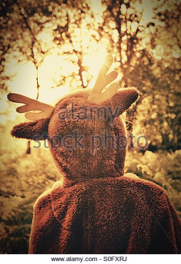 A young nature lover dressed in a onesie out exploring a forest - 'where the wild things are' - Stock Image