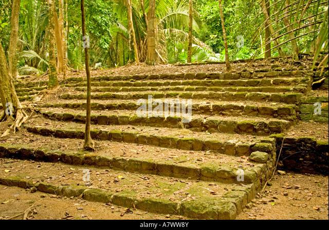 Costa Maya Mexico Chacchoben Mayan ruin series of steps - Stock Image