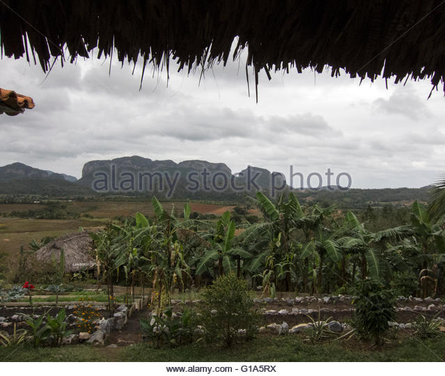View of mogotes or mountains framed by thatched roof of the porch of a rural estate Casa de Confianza, Vinales, - Stock Image