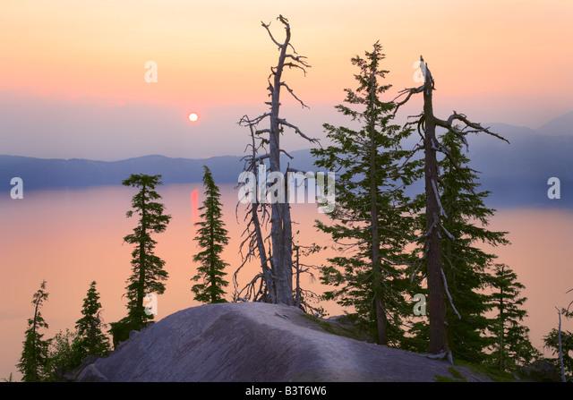 Trees at rim of Crater Lake, Oregon, at sunrise - Stock Image