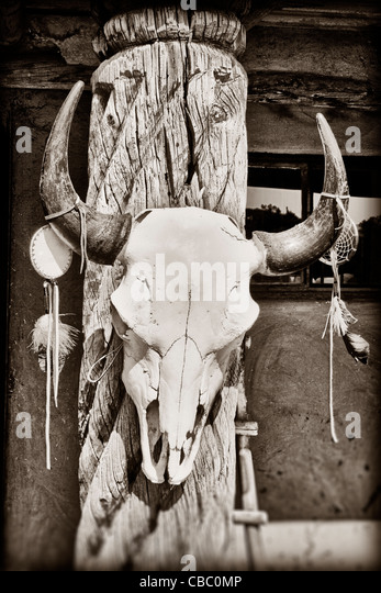 Cow skull hanging on post at Taos Pueblo in New Mexico - Stock-Bilder