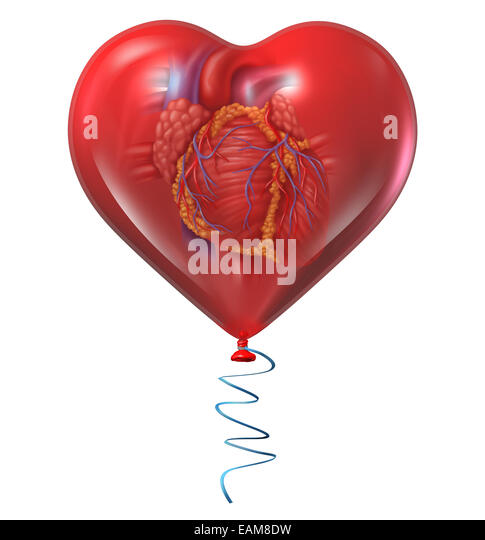 Heart health concept and medical symbol with a human anatomical organ inside a red balloon as an icon for circulatory - Stock-Bilder