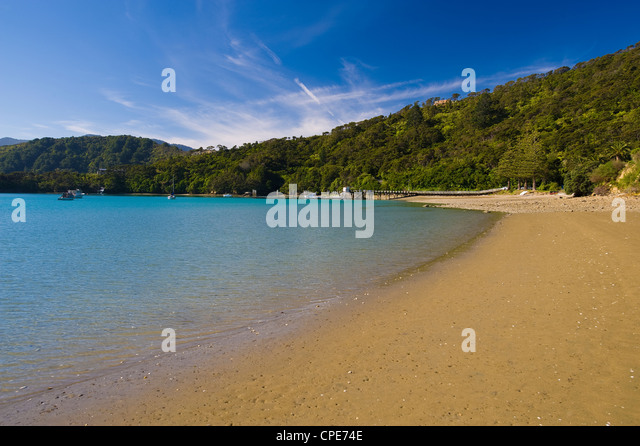 Kenepuru Sound, South Island, New Zealand, Pacific - Stock-Bilder