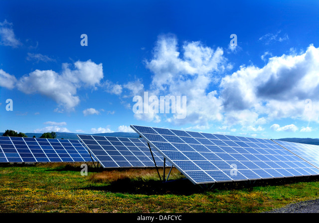 Solar panels in a large array - Stock Image