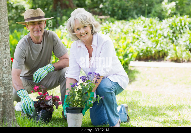 Mature couple engaged in gardening - Stock Image