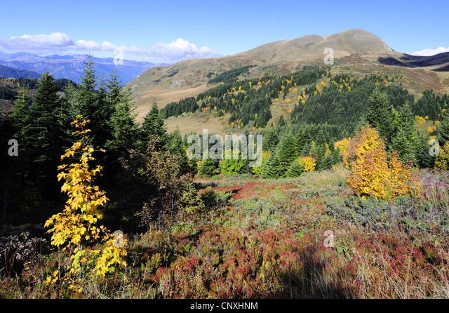 mountain meadow autumn above - photo #18