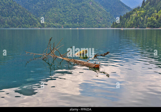 Scenery view of mountain lake with green mountains and driftwood on foreground - Stock Image