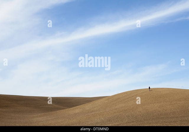 Washington USA person on ridgeploughed soil rolling downland - Stock Image