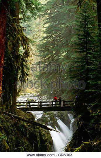 Bridge over Sol Duc Falls, Olympic National Park, Washington - Stock Image