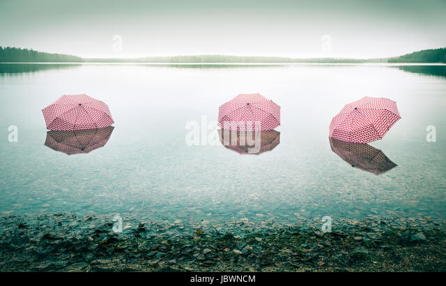Tree pinky umbrellas in the lake landscape. This picture describes global warming. - Stock Image