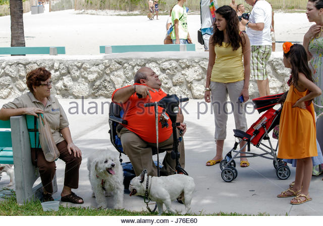 Miami Beach Florida Lummus Park Hispanic man disabled electric wheelchair dog - Stock Image