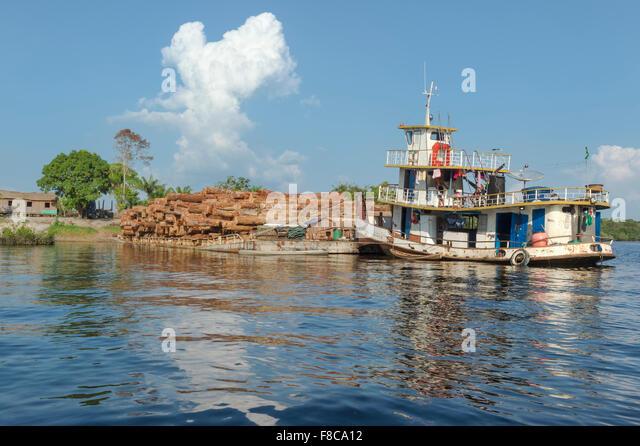 Barge transporting rainforest logs on the Amazon River, Amazona state, Brazil - Stock-Bilder